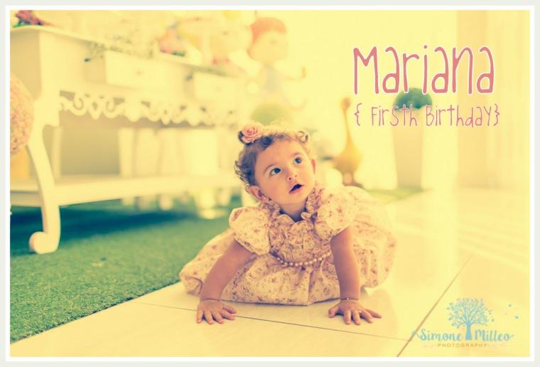 1-Mari1 Blog-25